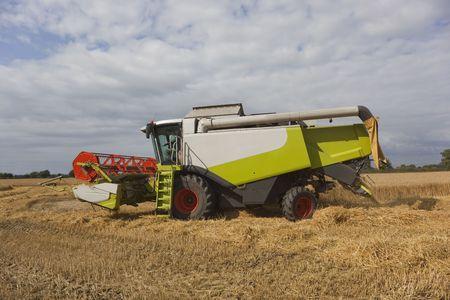 combine harvester: una cosechadora cortando un campo de cebada en verano