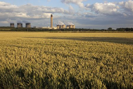coal fired: fields of ripening wheat with coal fired power station in the background under a summer sky