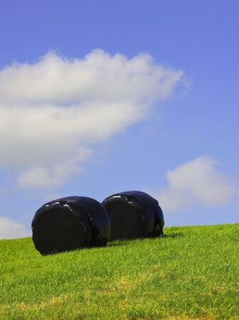 sheeting: two bales wrapped in black sheeting under a summer sky