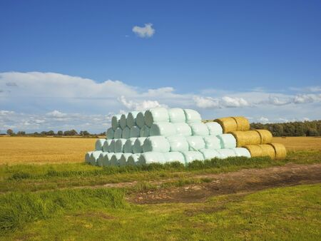 sheeting: a pile of bales wrapped in blue plastic sheeting at harvest time in summer