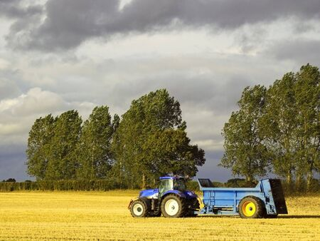 manure: a blue tractor spreading manure on a stubble field Stock Photo