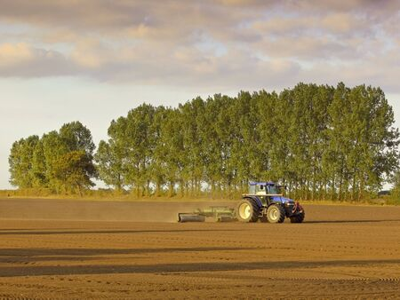 a tractor rolling a field on a warm summer evening Stock Photo - 5523539