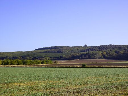 hillsides: view across arable fields to wooded hillsides in autumn