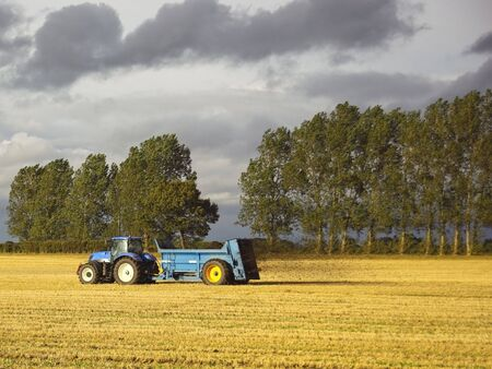 manure: a blue tractor spreading manure on a stubble field under a threatening sky