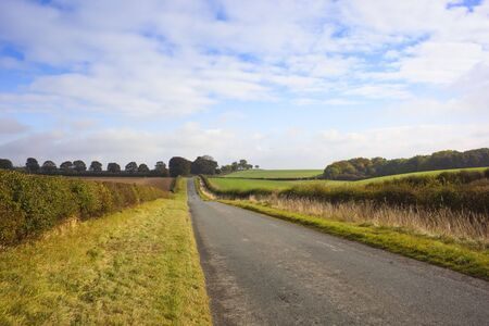 a quiet english country road in a rural setting with fields and trees Stock Photo - 5733097