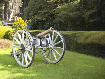 south india: a cannon in the botanical gardens of doddabetta in the nilgiri hills south india