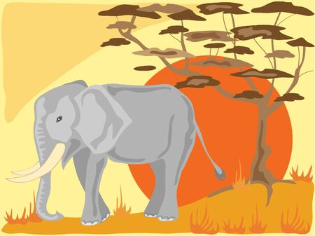 an african elephant with acacia tree and a big orange sun on a pale yellow background Stock Photo - 6689339
