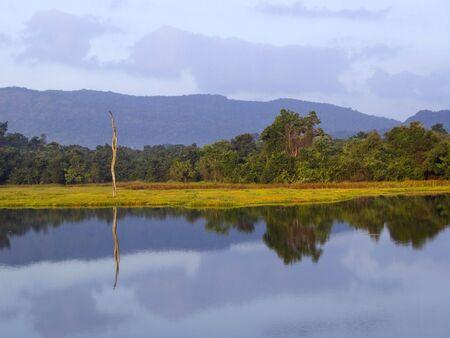 a view over dunawila wewa lake in wasgomuwa national park sri lanka photo