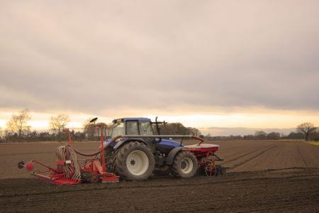 seed drill: farmer sowing spring barley at sunset Stock Photo