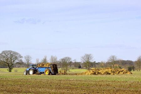 manure: blue tractor with manure spreader and manure heap in a spring landscape