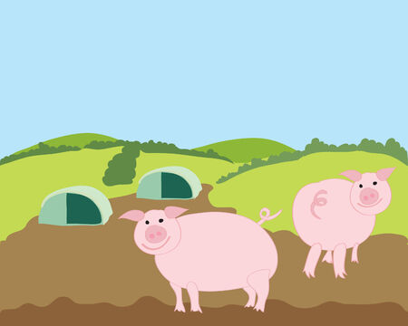 hedgerows: a hand drawn illustration of two free range pigs in a landscape under a blue sky Illustration