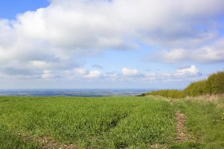 vale: krajobrazu rolniczego z pięknym widokiem całej vale of york Anglii w springtime