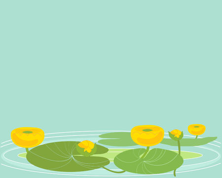 rippled: an illustration of  yellow water lillies on rippled water and a green background