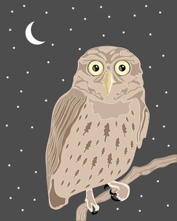 a hand drawn illustration of a wise owl sat on a branch in a night sky with moon and stars in the background Stock Vector - 7065243