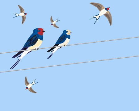 birds on a wire: a hand drawn illustration of a group of swallows sitting on a wire and flying around in preparation for a long journey under a blue sky Illustration