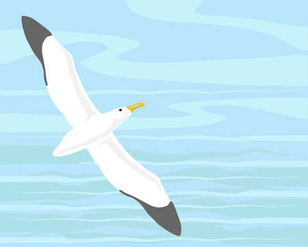 seabird: a hand drawn illustration of an albatross flying across the sea