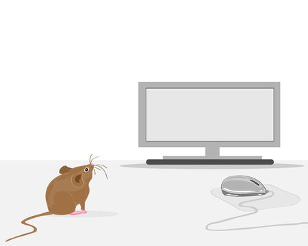 a hand drawn illustration of a house mouse on a desk near a computer and mouse  Vector