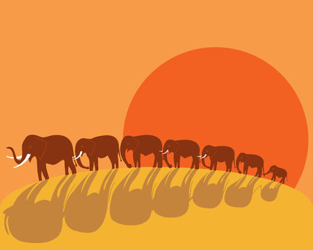 a hand drawn illustration of a group of elephants walking over a hillside in the african sunset with long shadows Stock Vector - 7514252