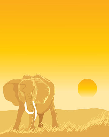 plains: a hand drawn illustration of an african elephant in grasslands with a sun setting in the distance