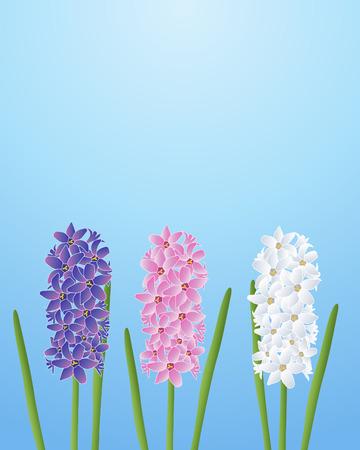 푸른 하늘에 대하여 세 가지 앵 꽃의 삽화