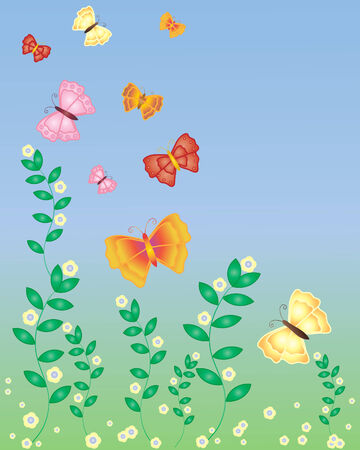 thyme: illustration of butterflies in flight over flowering thyme plants in summer