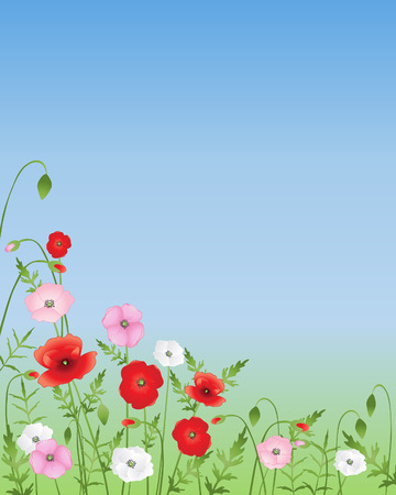 an illustration of red pink and white poppies growing wild on a green and blue background Stock Vector - 8466054