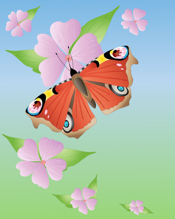 inachis: an illustration of a peacock butterfly with open wings on pink mallow flowers under a blue sky