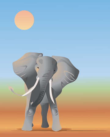 dusty: an illustration of an african elephant in a dusty landscape in the sun