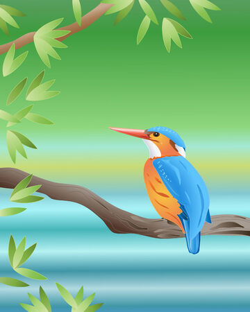 water bird: an illustration of a malachite kingfisher sitting on a branch by a river