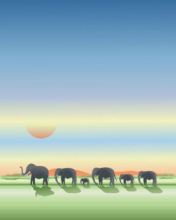 dramatic sky: una ilustraci�n de los elefantes africanos caminando a lo largo de las llanuras al atardecer bajo un cielo dram�tico
