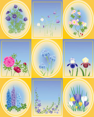 paeony: an illustration of a variety of spring and summer flowers in oval and rectangle shapes and yellow background