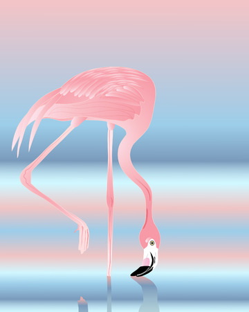an illustration of a beautiful pink flamingo with blue and pink reflection on water