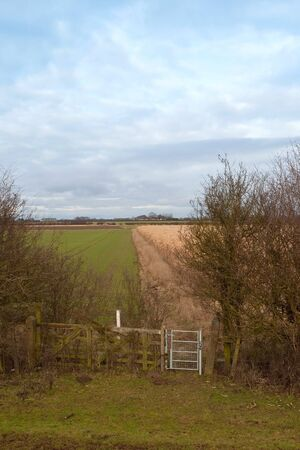 galvanised: english winter landscape with a small galvanised gate hawthorn hedges and fields Stock Photo