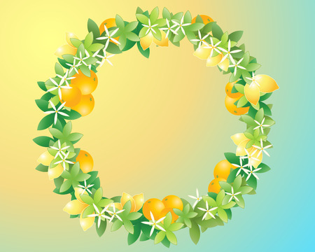 an illustration of a wreath made up of green leaves oranges and lemons and white blossom flowers on a blue and yellow background Vector
