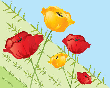 an illustration of red and yellow poppies on a green and blue diagonal background with leaf design Vector