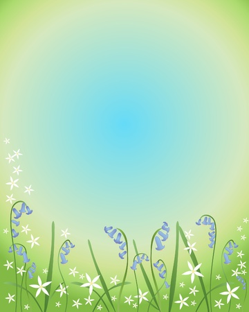 bluebells: an illustration of bluebells and stitchwort on a green and blue background