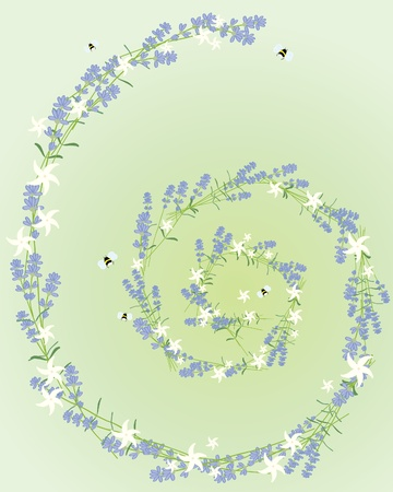 bee on white flower: an illustration of a spiral made up of lavender and jasmine flowers on a pale green background