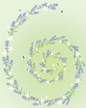 une illustration d'une spirale composée de fleurs de lavande et de jasmin sur un fond vert pâle Vecteurs