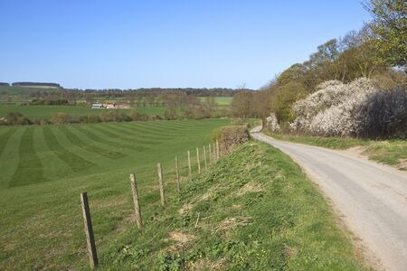 an english landscape with rolling hills fields and hedgerows under a blue sky in springtime photo