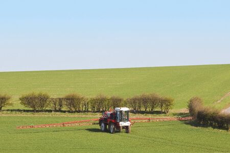 crop sprayer: a red crop sprayer in green fields of wheat in springtime under a blue sky Stock Photo