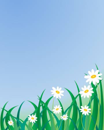 an illustration of grass and daisies under a clear blue sky