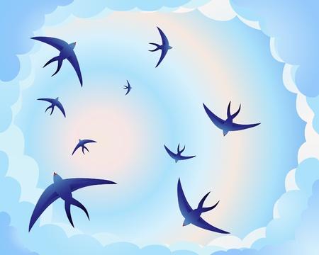 migraci�n: una ilustraci�n de golondrinas dando vueltas en un cielo de noche azul y Rosa
