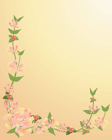 an illustration of honeysuckle flowers leaves and berries on a honey color background