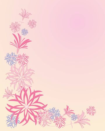 ragged robin: an illustration of ragged robin flowers in an abstract arrangement on a pink background Illustration