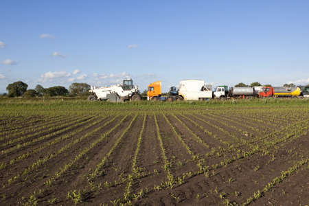 resurfacing: a view across a field of young corn plants to a fleet of highway resurfacing vehicles under a blue sky