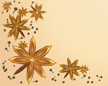 an illustration of a star anise design with cloves and peppercorns on a beige color background