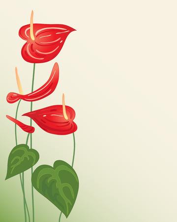 원예: 밝은 빨간색 안스리움 꽃과 창백한 배경에 녹색 단풍의 그림 일러스트