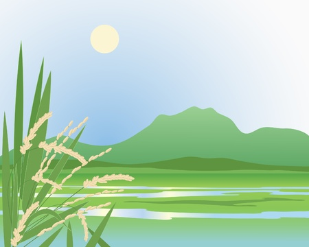 an illustration of a beautiful green exotic paddy field with mountains and ripened rice plants in the foreground under a yellow sun Ilustrace