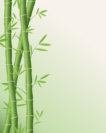 an illustration of green bamboo poles with leaves on a pale green background Stok Fotoğraf - 11563001