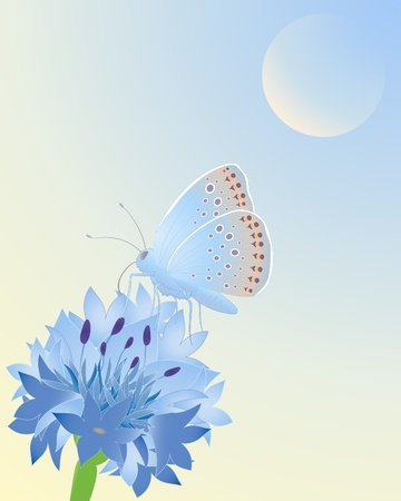 an illustration of a blue butterfly resting on a cornflower under a blue sky Vector